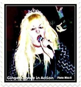 gingerc